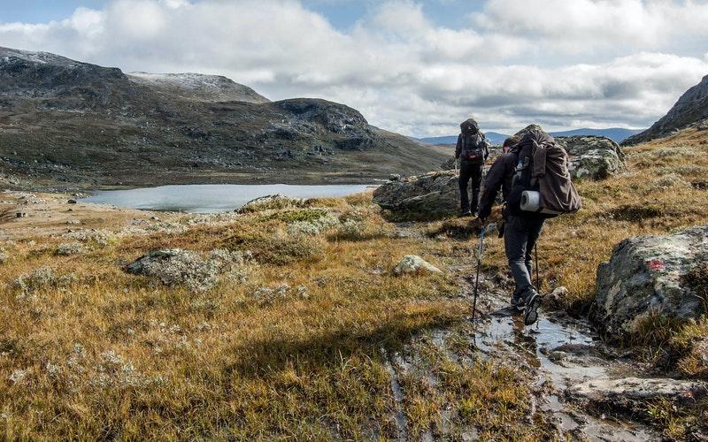 Randonnée-trekking-trail-marche-nordique-zoom-sur-les-activités-pédestres-les-plus-populaires